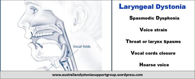 Laryngeal Dystonia