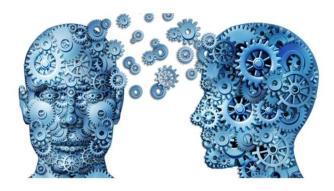 Dystonia Research brain
